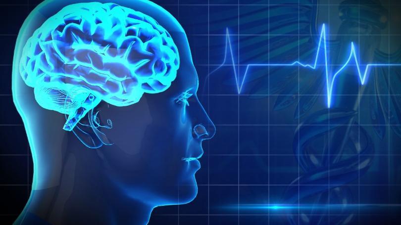 """装备同理心:解密""""镜像神经元"""""""