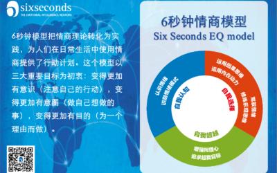 6秒钟情商模型 The Six Seconds EQ Model